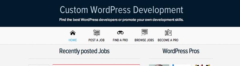 wpmu-dev-jobs-and-pros