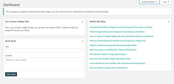 Screenshot of the new custom text widget.