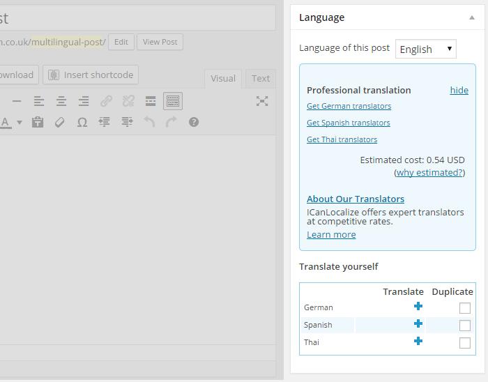 WPML Translation Panel