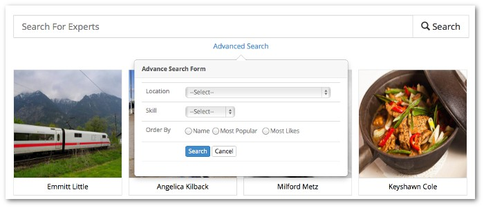 Screenshot of experts advanced search dialog