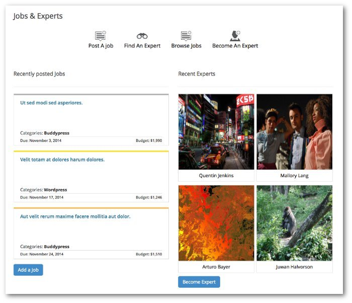 Screenshot of the Job & Experts landing page showing latest Jobs and Experts