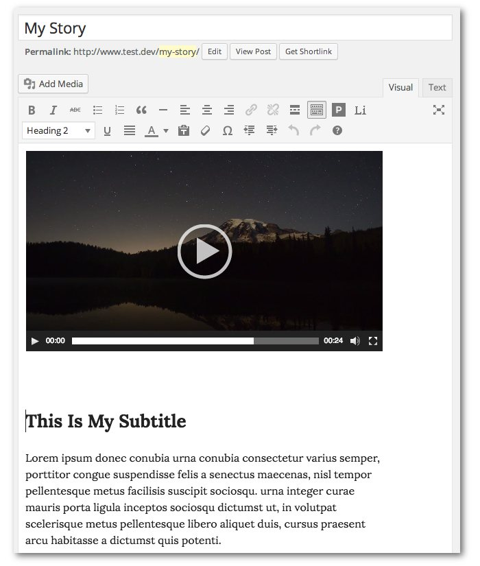 Screenshot of the post editor screen showing the video and subtitle which will form the cover page