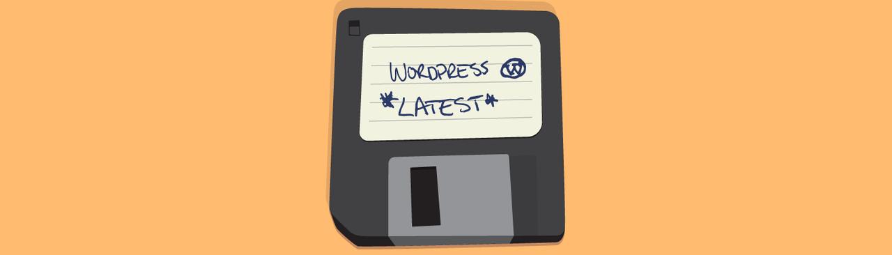 Setting Up WordPress Like a Pro - WPMU DEV