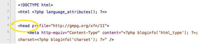 Head section of header.php file.