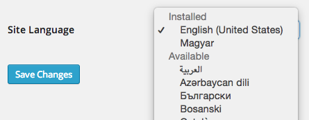 Languages In WP 4.1