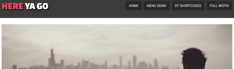 siteturner-here-ya-go