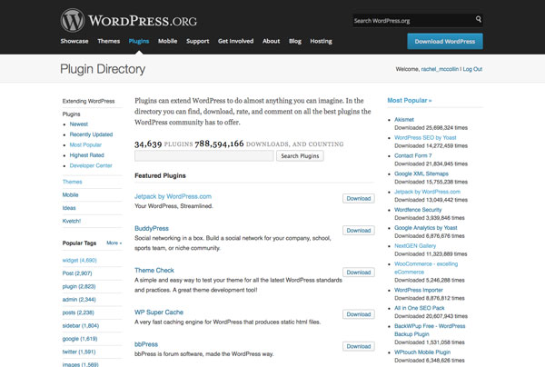 The WordPress plugin repository gives access to thousands of free plugins