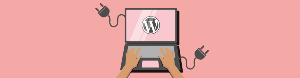 WordPress CMS Plugins