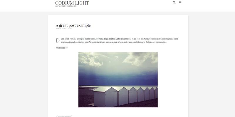 Codium Light theme