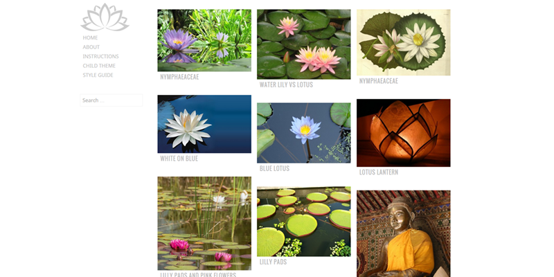 Water Lily theme