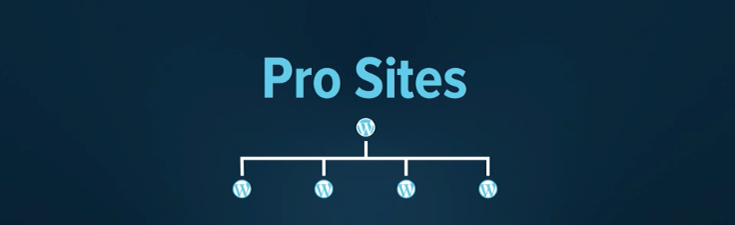 pro-sites-wpmudev