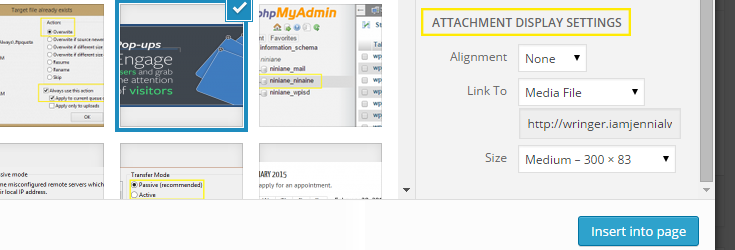 "The ""Attachment Display Settings"" portion of the options in the media uploader which appears once an thumbnail is selected from the list."