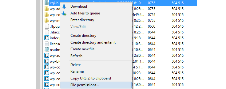"The cgi-bin folder has been right clicked and the mouse is hovering over the ""File permissions"" option from the list that appeared."