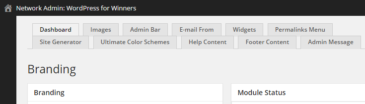 A selection of tabs displayed at the top of the Ultimate Branding dashboard page.