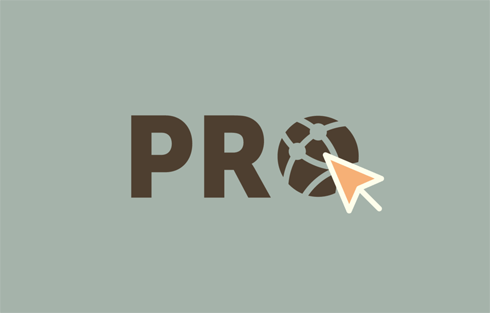Pro Sites for pro Multisite users.