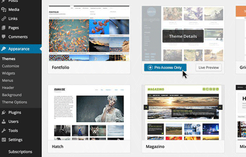 Enable the premium themes module in Pro Sites and charge users for access to a greater range of themes.