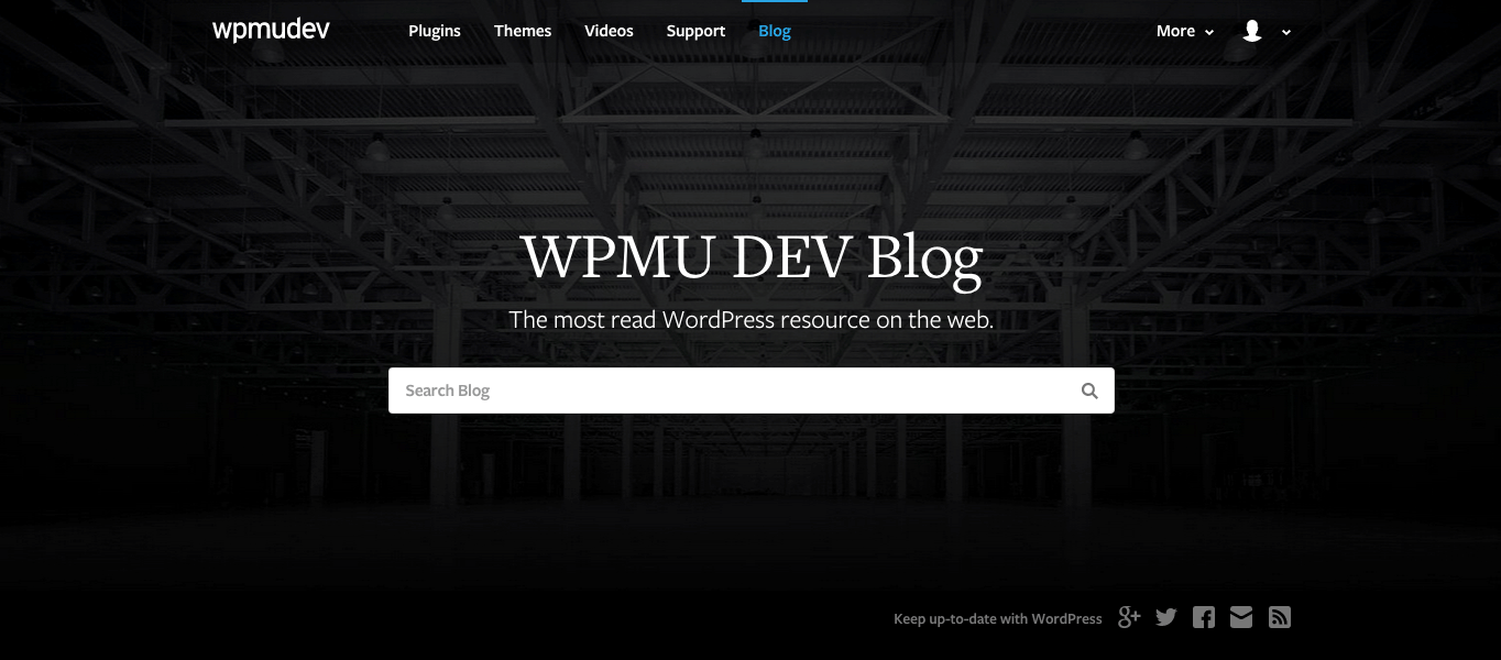 With more than 4000 articles in our archives, our blog is the best WordPress resource out there!