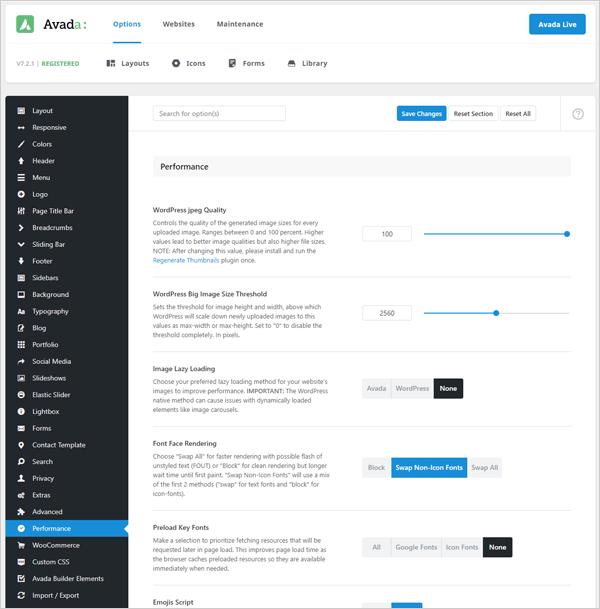 Avada theme - performance options.