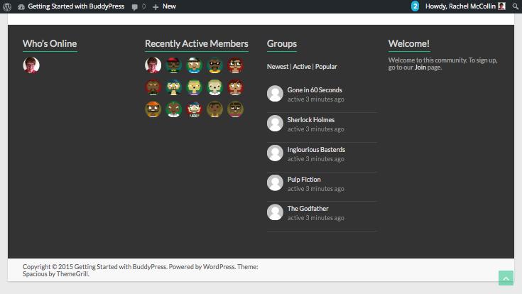 Installing BUddyPress - footer widgets showing test data