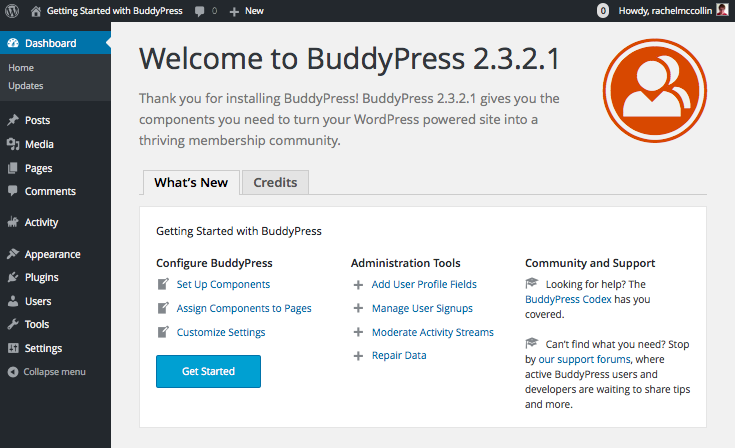 BuddyPress dashboard welcome screen