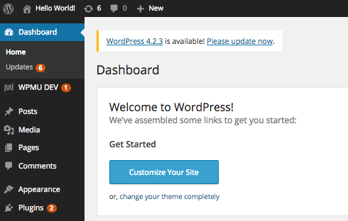 Use the WordPress dashboard for inspiration on how to structure your content.
