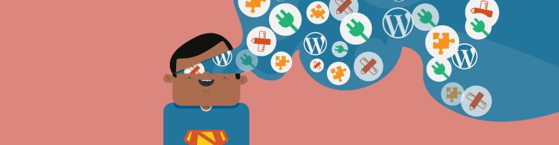 WordPress plugin knowledge