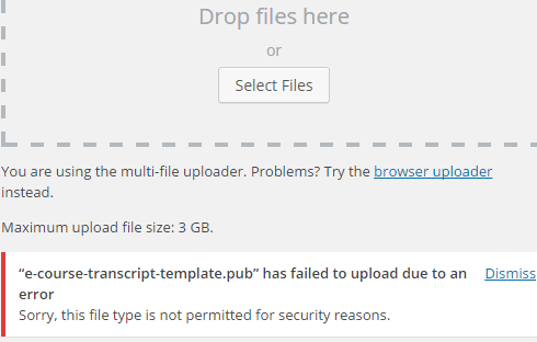 Error message in WordPress: File type not permitted.