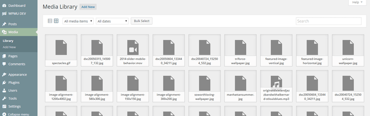 Media library showing just files, no images.