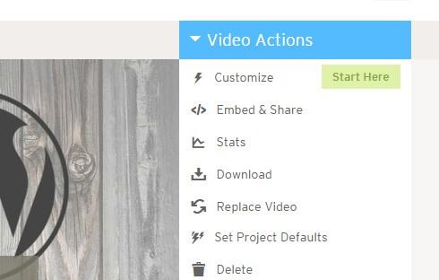 Video actions menu