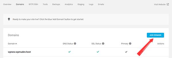 Adding a Domain in WPMU DEV Hosting