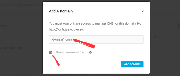Add a Domain popup screen in WPMU DEV Hosting