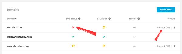 WPMU DEV Hosting automatically checks of DNS Records propagation