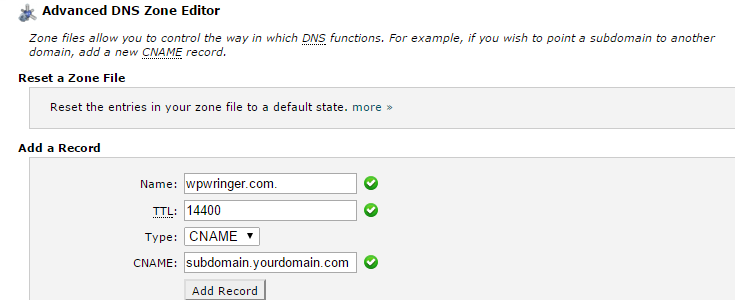"The ""Advanced DNS Zone Editor"" page with sample data filled into the mapping form."