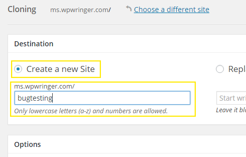 "The ""Create a new site"" radio button is selected and a slug has been entered in the field below it called ""bugtesting."""