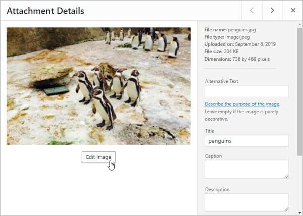 Screenshot edit image in WordPress media library.