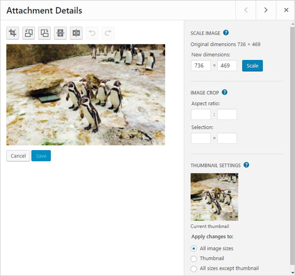 Edit image in WordPress Media Library - Attachment Details screen.