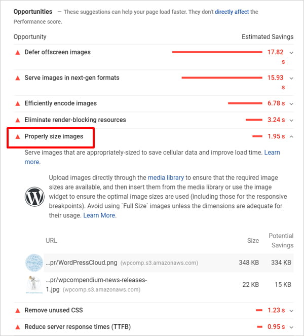 Google PageSpeed Insights report highlighting properly size images.