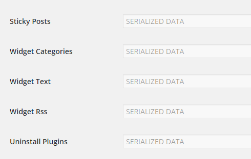 Serialized data displayed on the settings tab.