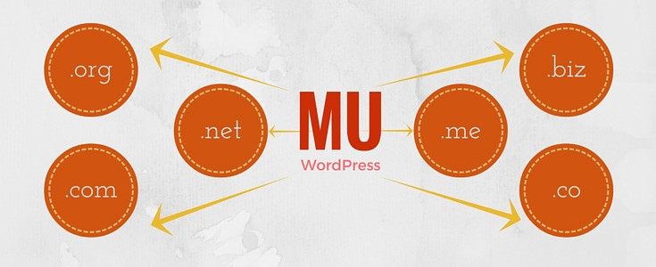WordPress MU Domain Mapping plugin