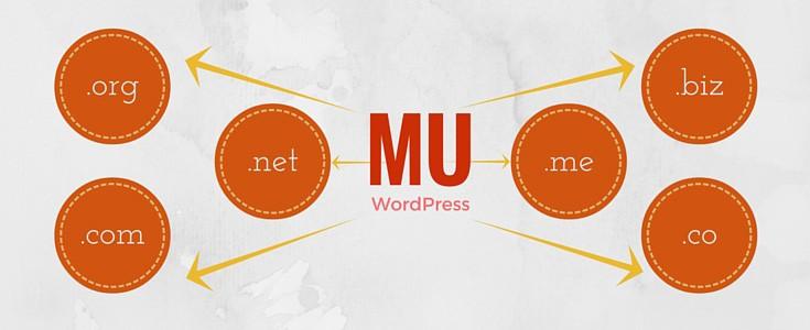 WordPress MU Domain Mapping plugin