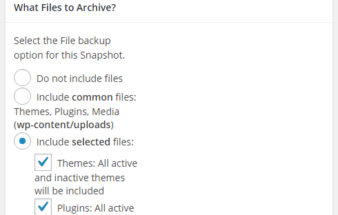 "The archive section of the ""Add New"" snapshot page with ""include selected files"" clicked."
