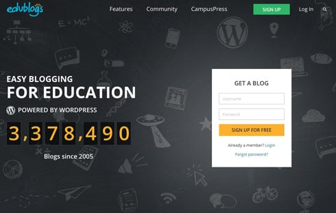 Edublogs is an example of a successful product-based business aimed at a specific market.