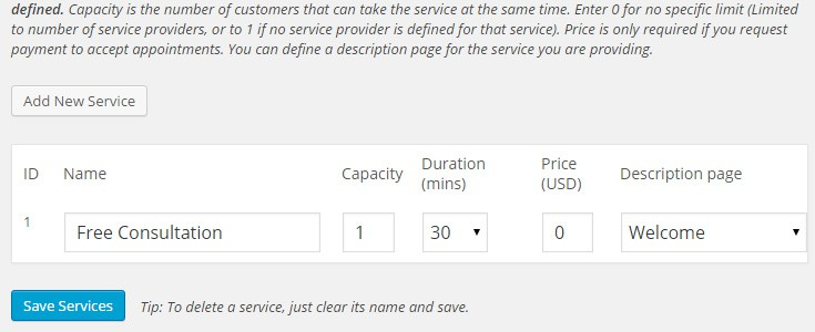 "The ""Services"" page in the settings with sample options enetered"