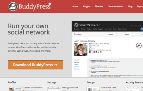 BuddyPress is one area in which WordPress developers might specialize.