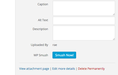 "Click ""Smush Now!"" on the individual image to optimize it."