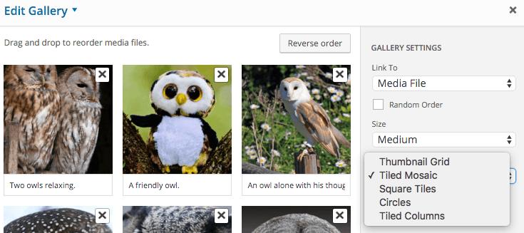 Gallery type options