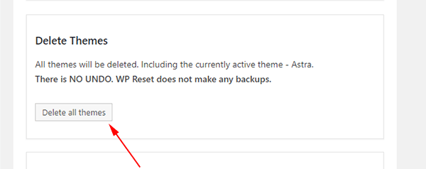Delete all the themes in your WordPress site