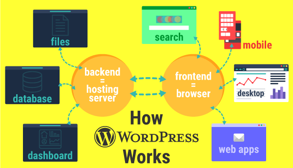 An inforgraphic showing a quick overview of how WordPress works