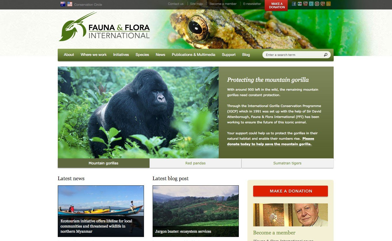 Fauna & Flora International also uses a custom WordPress theme.