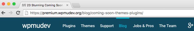 WPMU DEV site using post name permalinks.